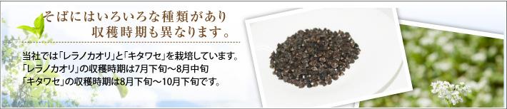 当社では「レラノカオリ」と「キタワセ」を栽培しています。 「レラノカオリ」の収穫時期は7月下旬~8月中旬 「キタワセ」の収穫時期は8月下旬~10月下旬です。